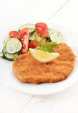 Schnitzel and salad with fresh vegetables Royalty Free Stock Photo