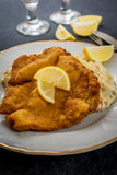 Schnitzel with salad. Pork fried schnitzel with traditional potato salad on black stone table Stock Photo