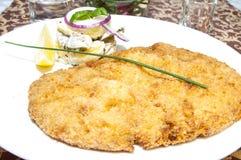 Schnitzel. Vegetable salad at restaurant Onion  Parsley Stock Image