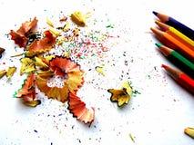 Schnitzel von der Bleistiftfarbe auf Weißbuch Stockbild
