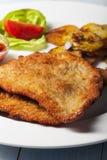 Schnitzel. Wiener schnitzel with roasted potatoes Stock Photos