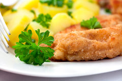 Schnitzel With Potatoes Royalty Free Stock Images