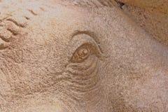 Schnitzen der Steinstatue, Augenelefant lizenzfreie stockfotos