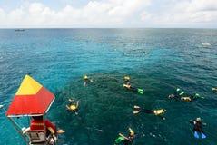 Schnorcheln auf dem Great Barrier Reef Port Douglas queensland australien stockbild