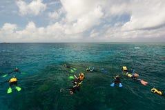 Schnorcheln auf dem Great Barrier Reef Port Douglas queensland australien stockfotos