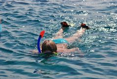 Schnorcheln und Tauchen im Roten Meer Stockfoto