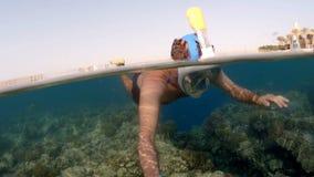 Schnorchelschwimmen-Spaltenansicht, Rotes Meer, Ägypten stock video