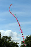 Schnur von Drachen verbindendem zusammen fliegen. Stockfotos