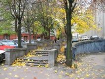 Schodków kroków prowadzenie jesień zdjęcie royalty free