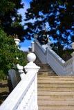 Schodki, kroki, balustrady fotografia royalty free