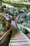 Schodki od handlowa zawalają się Wielki Zawalają się, Niah park narodowy zdjęcia stock
