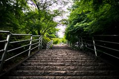 Schodki prowadzi do Chureito Pagodowy pobliski Jeziorny Kawaguchi Japonia fotografia stock