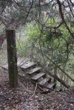 Schodki przy Holandia jeziora parkiem w Weatherford Teksas Obrazy Stock