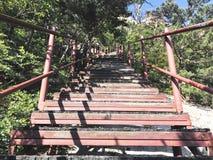 Schodki w górę i piękne góry Seoraksan park narodowy 30 target1781_1_ strażników Lipiec królewiątka Korea kumpel s Seoul południe obraz royalty free