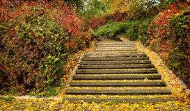 Schodki w jesieni Obraz Royalty Free