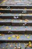 Schodki zakrywający z jesień suchymi liśćmi obraz royalty free