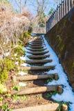 schodowy sposób z śniegiem Zdjęcia Stock