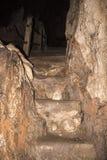 schody naturalne Obraz Stock