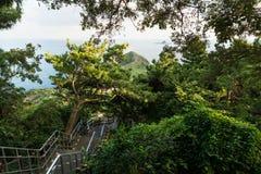 Schody przy Sanbang górą z widokiem smok głowa przy Yongmeori wybrzeżem, Ro, Jeju wyspa, Południowy Korea Obraz Stock