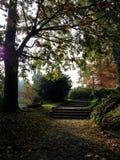 Schody w jesieni obrazy stock
