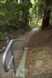 Schody wzdłuż wiejskiej ścieżki zdjęcia royalty free