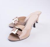 schoen of de Bruine schoenen van de kleuren toevallige vrouw op een achtergrond Stock Fotografie