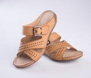 schoen of de Bruine schoenen van de kleuren toevallige vrouw op een achtergrond Royalty-vrije Stock Afbeeldingen