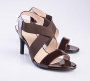 schoen of de Bruine schoenen van de kleuren toevallige vrouw op een achtergrond Stock Foto's