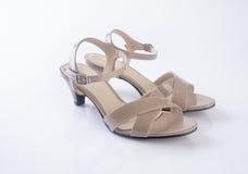 schoen of de Bruine schoenen van de kleuren toevallige vrouw op een achtergrond Royalty-vrije Stock Afbeelding