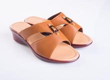 schoen of de Bruine schoenen van de kleuren toevallige vrouw op een achtergrond Royalty-vrije Stock Fotografie
