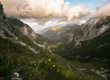 Schoenau w mgle, Niemcy Fotografia Royalty Free