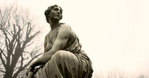 Schoenbrunn avec des statues pendant le matin clips vidéos
