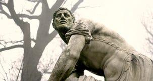 Schoenbrunn avec des statues pendant le matin banque de vidéos