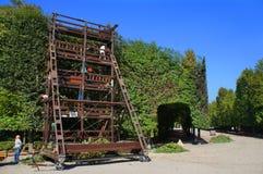 Schoenbrunn ogródu ` s opieka Obraz Royalty Free