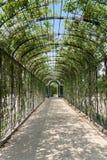 Schoenbrunn Sissi Castle - Vienna Fotografia Stock
