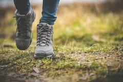 Schoenen in een bos Royalty-vrije Stock Foto