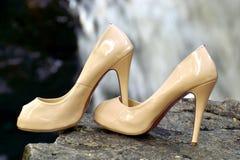 Schoenen een paar pompen Stock Afbeeldingen