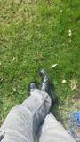 Schoenen in het gras Stock Foto's