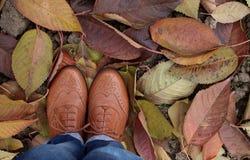 Schoenen op de kleurrijke bladeren De herfst Royalty-vrije Stock Foto's