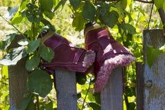 Schoenen op de omheining Stock Fotografie