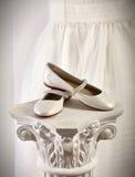 Schoenen op expositor Royalty-vrije Stock Afbeelding