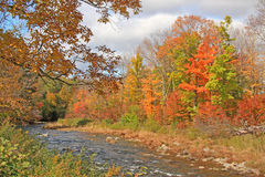 Schoharie Creek and fall colors Stock Photo