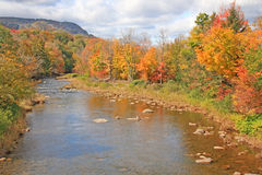 Schoharie Creek and fall colors Royalty Free Stock Photo