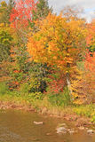 Schoharie Creek and fall colors Royalty Free Stock Image