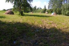 Schok van stro op groen gras stock foto