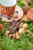 Schokolade stockfoto