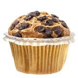 Schokolade des Muffin-kleinen Kuchens lokalisiert Lizenzfreies Stockbild