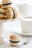 Schokolade macarons lizenzfreie stockfotos