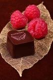 Schokolade mit Himbeeren stockbilder