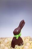 Schokolade Ostern Bunny Standing im Korb mit einfachen Eiern Lizenzfreie Stockfotos